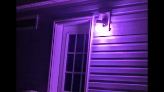 Purple lights at home campaign brings awareness to domestic violence