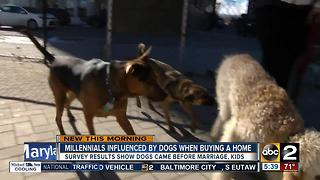 Dogs influence millennials when buying a home - Video
