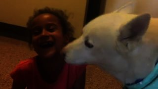 LIttle girl giggles from onslaught of doggy kisses
