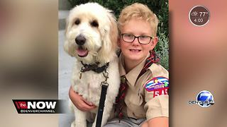 Cub Scout kicked out after asking Senator tough questions - Video