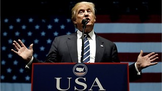 Trump Plans To Cut the Fat In Defense Budget - Video