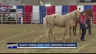 Idaho Horse Expo this weekend - Video