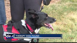 Canyon County family reunited with service dog - Video