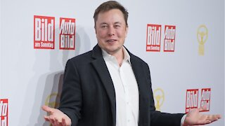 Elon Musk Hints At Testla Hatchback Model