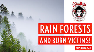 CMS - Rain Forests, Burn Victims and Weak COVID Response In Brazil