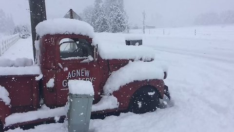 Snowfall Blankets Olympic Peninsula After Storm Hits Pacific Northwest