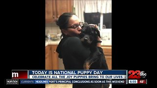 March 23 marks National Puppy Day