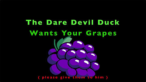 DareDevil Duck Wants Your Grapes