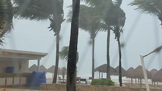 Tropical Storm Franklin Whips Palm Trees at Playa del Carmen Resort - Video