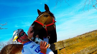 Horse tries to eat cyclist's water bottle and camera