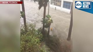 Miami is getting hit with heavy flooding as a result of Hurricane Irma. - Video