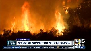 Flagstaff snow needed after dry winter ahead of wildfire season - Video