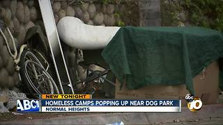 Homeless camps popping up near dog park - Video