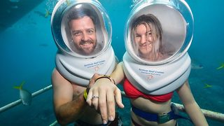Deeply in love: Australian couple get engaged underwater in the Great Barrier Reef - Video