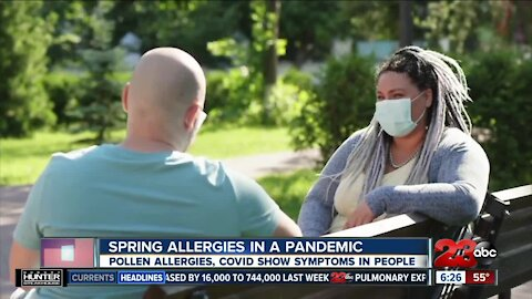 Spring allergies in a pandemic, pollen allergies and COVID show symptoms in people