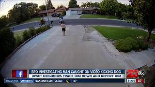 BPD investigating man caught on video kicking dog - Video