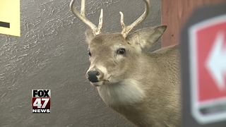 Hunters hitting the woods, fields for firearms deer season - Video