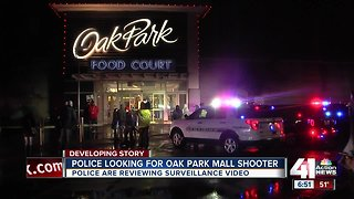Witnesses recount confusion, shock after gunshots fired outside Oak Park Mall