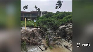Sea Turtle nests destroyed after Tropical Storm Sally