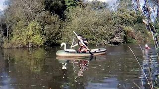 Rescuers Help Trapped Swan To Make A Sweet Escape