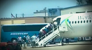 Exclusive: Video of Plane Loads of Illegal Immigrants Seen Flying Out of Texas