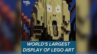 World's largest LEGO art display comes to Tampa - Video