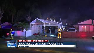 Lakeside house fire, firefighter rescues dog - Video