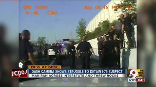 Video shows man fight officers on side of I-75 - Video