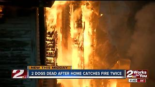 Family loses home and two dogs after fire - Video