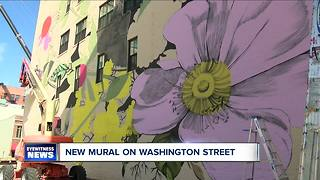 Flowers are blooming on Washington Street - Video