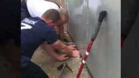 Chicago Firefighters Rescue Stuck Cat