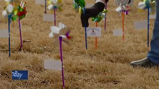 Pinwheels placed for missing people in Wisconsin