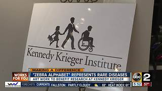 Zebra Alphabet paintings raise money, awareness about rare diseases - Video