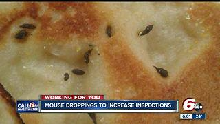 Indy Little Caesars forced to close after customer finds mice droppings in pizza - Video