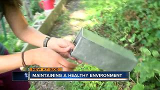 Urban Ecology Center works to learn more about animal environment - Video