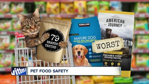 Is your pet food safe? Some contain toxins, lead