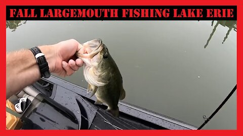 Lake Erie Fall Largemouth Fishing