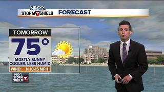 Cooler and quieter Sunday forecast - Video