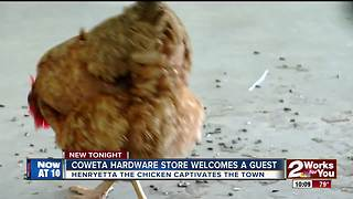 Coweta hardware store welcomes a guest - Video