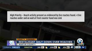 Dirty Dining: Roach activity temporarily shuts down 2 restaurants - Video