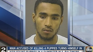 Man accused of killing 4 puppies turns himself in - Video