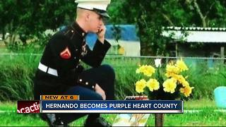 Hernando Co. becomes a Purple Heart County to honor those injured, killed in combat - Video