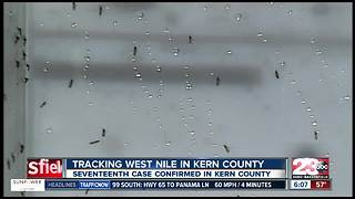 17th case of West Nile Virus in Kern County confirmed