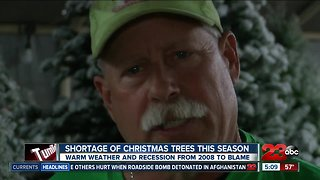 Experts explain Christmas tree shortage this year