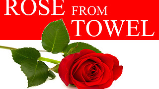 DIY towel art: How to make a beautiful rose - Video