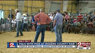 Pals with Pigs at Rogers County Fair - Video