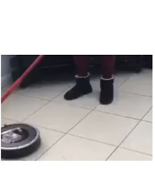Welsh Woman With Roomba Proves Anybody Can Curl at Home