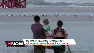 Bay area #5 in country for staycations - Video