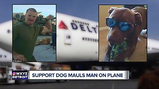 Delta Airlines reviewing procedures after emotional support dog bites passenger - Video