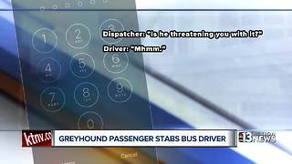 Witness recounts moments before passenger stabbed bus driver - Video